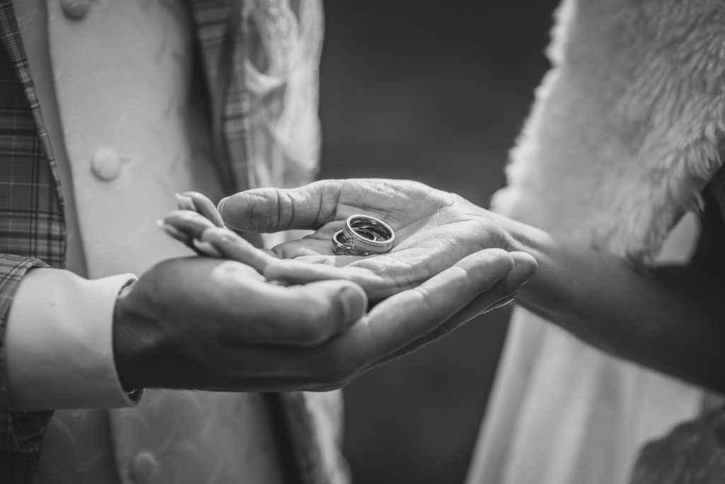 Svadobné fotografovanie v kaštieli Palárikovo